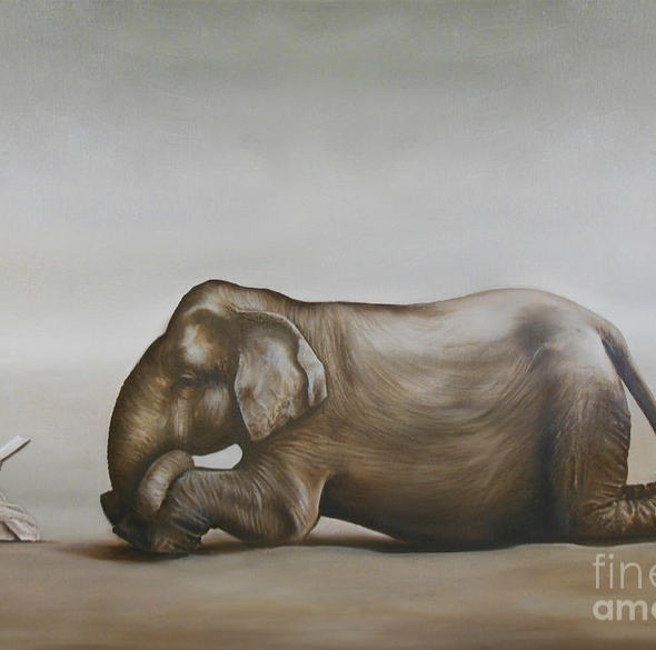 The Taming of the Elephant: Sold