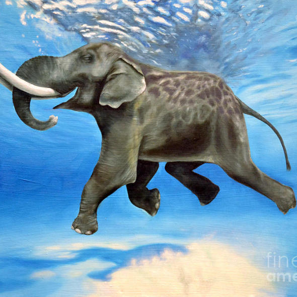 Rajan the Swimming Elephant: Sold